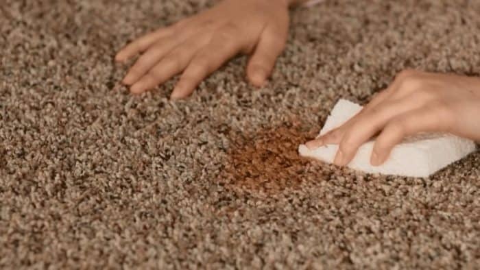 carpet-cleaning-protection-image2