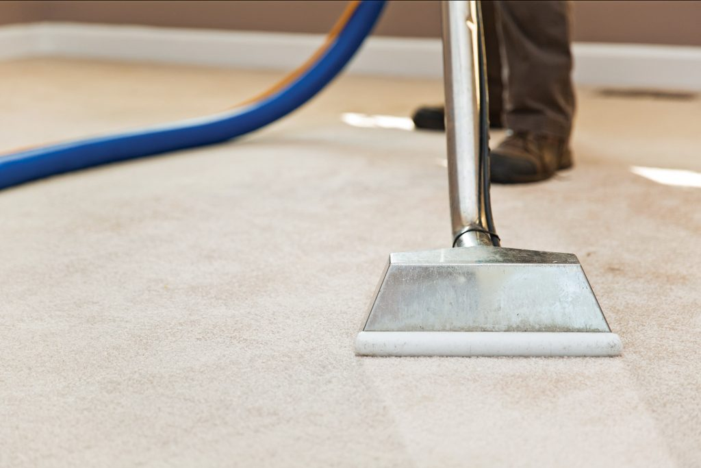 cleaning-carpet-adelaide-with-dogs